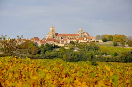VEZELAY VIGNES FINAL