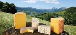 Queijos da Auvergne