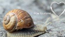 SLOW TURISMO