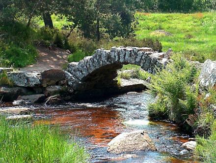 As aguas taninas debaixo da ponte de Senoueix
