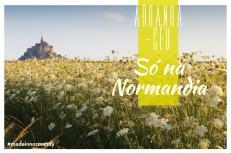France web 2048x1363 normandia