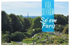 France web 2048x1363 vida