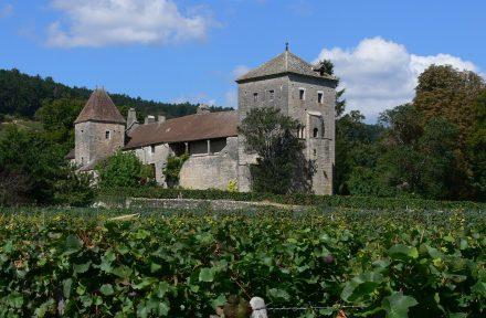 O castelo de Gevrey-Chambertin